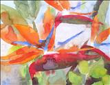 Strelitzia I by Laura Boyd, Painting, Watercolour on Paper