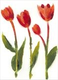 Tulipfest 2 by Laura Boyd, Painting, Monoprint