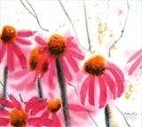 cone flowers by Laura Boyd, Painting, Watercolour on Paper